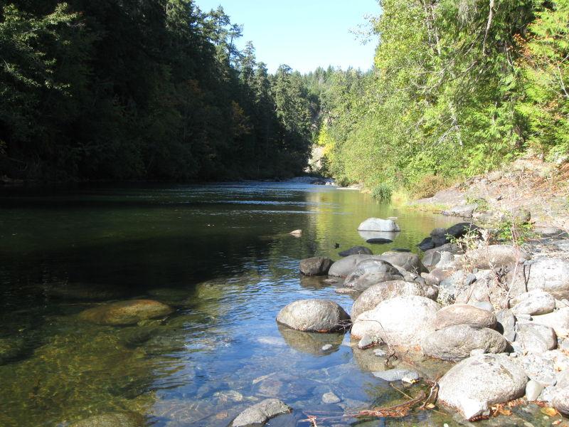 Taken at the Nanaimo River