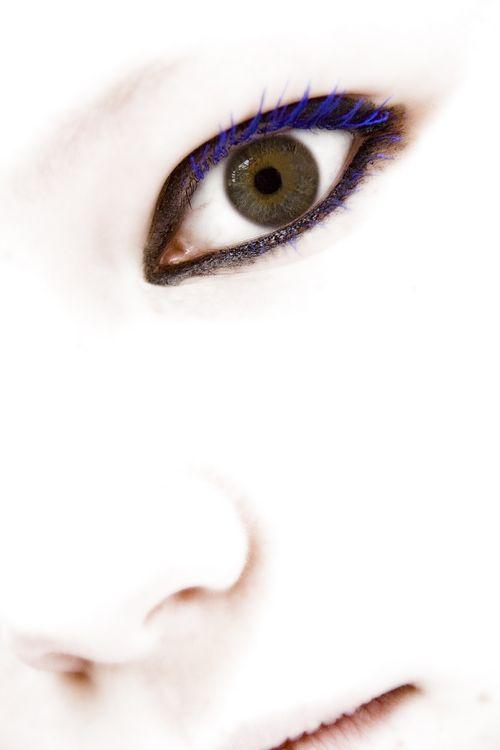Kays eye