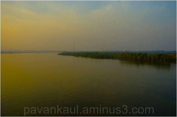 Scenic serenity in landscape