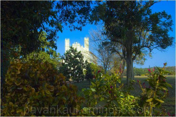 Church glimpsed thorugh grrenery