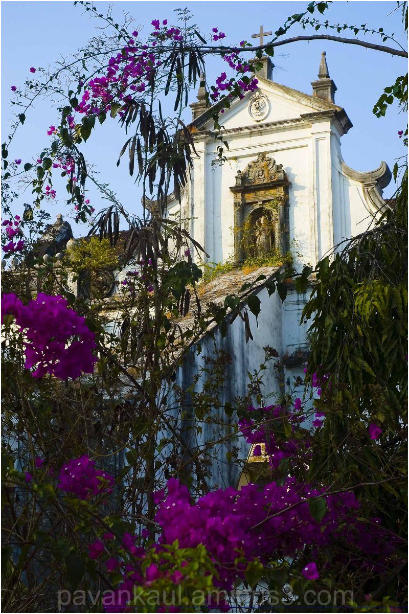 Church amidst greenery
