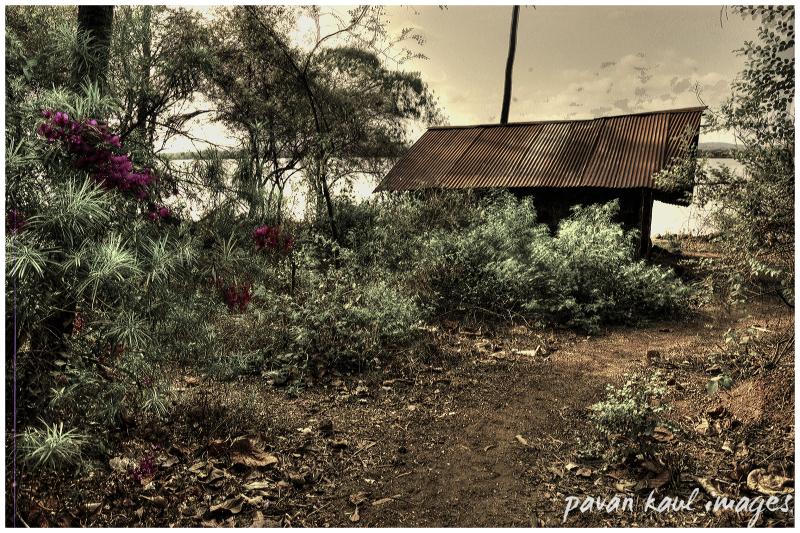 shack by goan backwaters