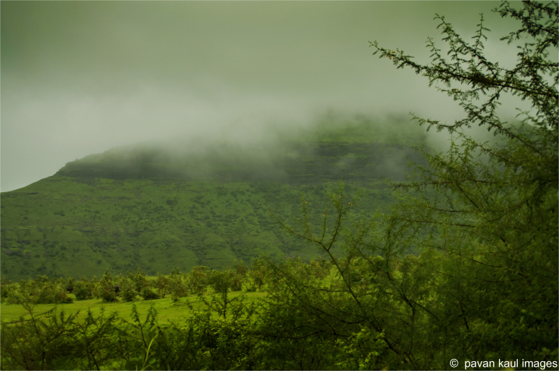 monsoon mist over hills and trees
