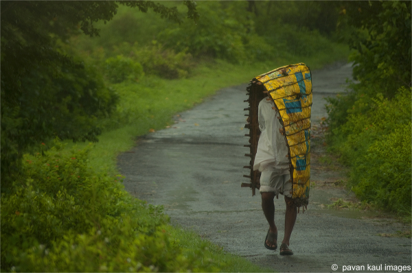 man walking on road through fields in rain