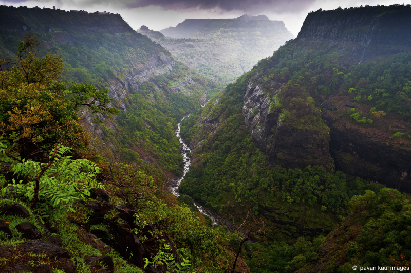 monsoon stream between hills