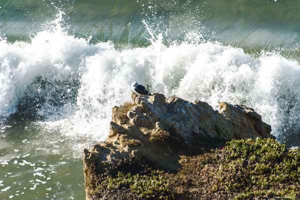 Waves crashing on rocks at Matador beach, Malibu