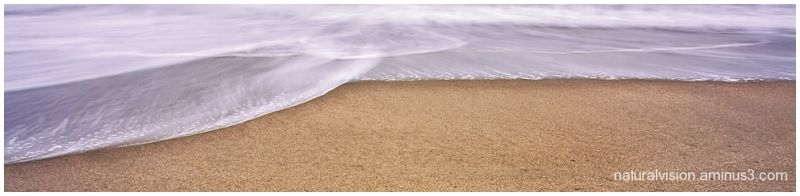 shoreline crop