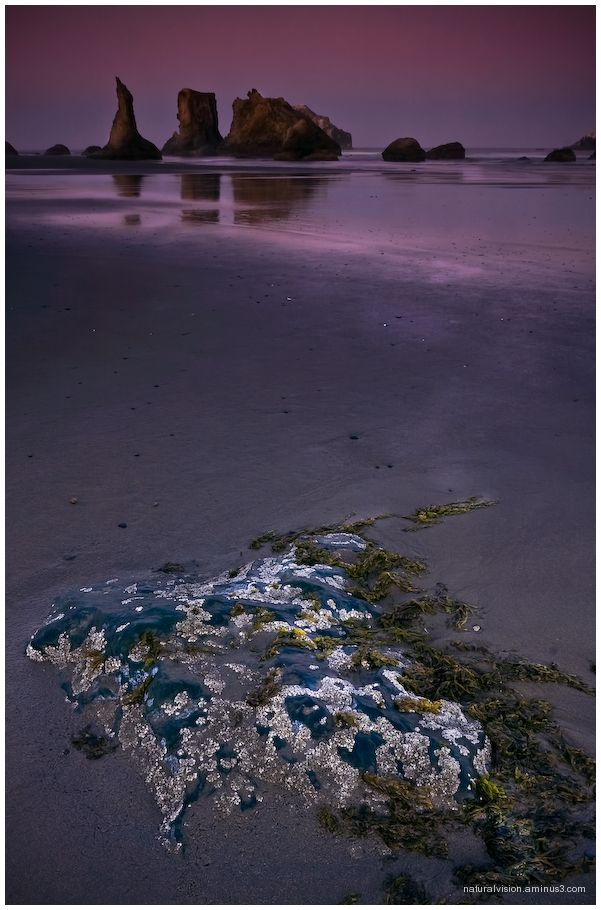 bandon beach shoreline
