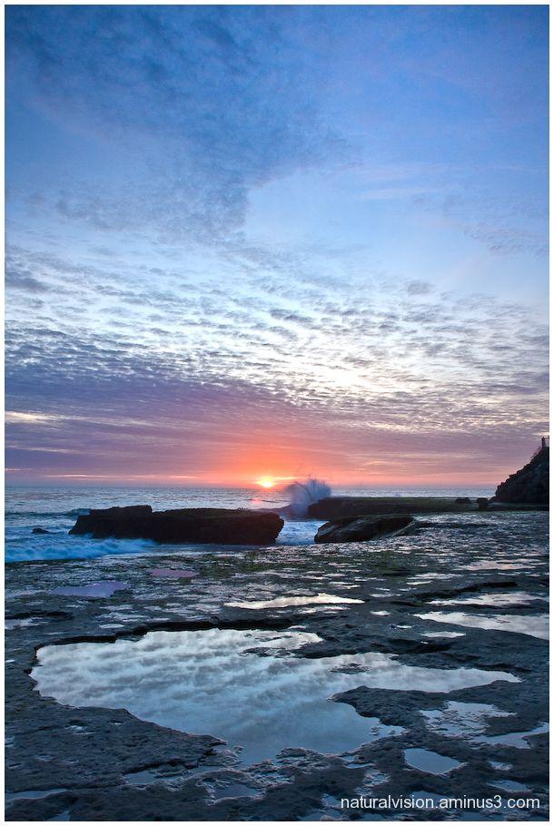 santa cruz california pacific pleasure point live