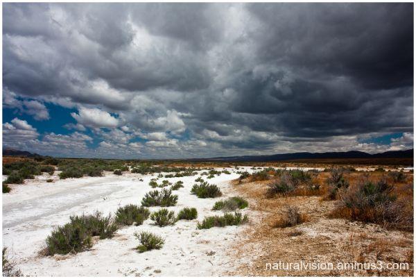 Carrizo plain Salt flats Soda Lake