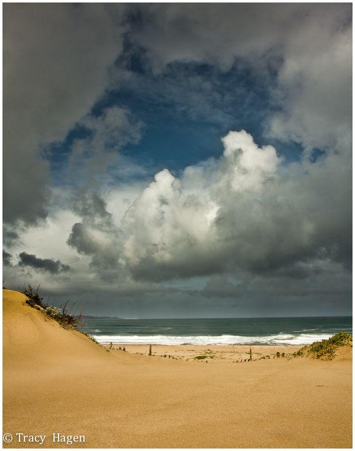 Monterey Dunes