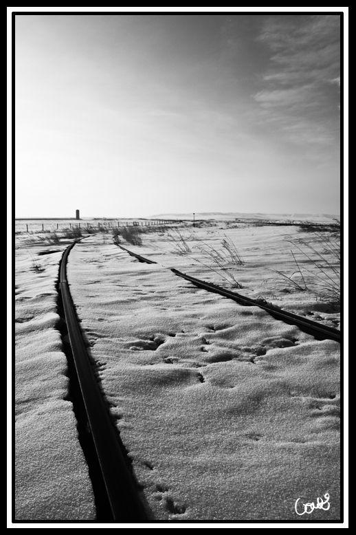 Railroad tracks in Standard, AB.