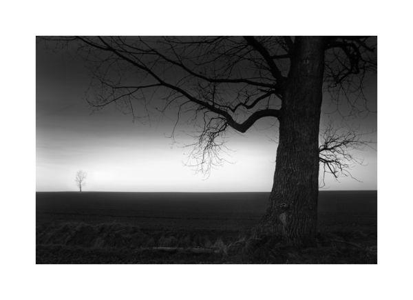Le Pays de la Nuit # 3