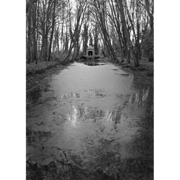 L'étang oublié