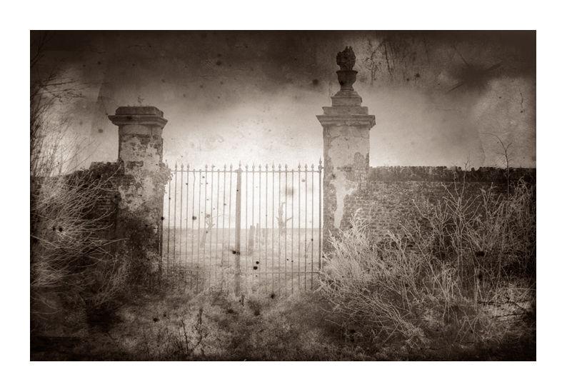 photo vieille grille atmosphère gothique