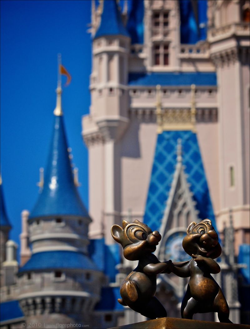Chip n Dale and the Magic Kingdom Castle