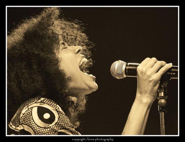Nneka, Paléo Festival 2008