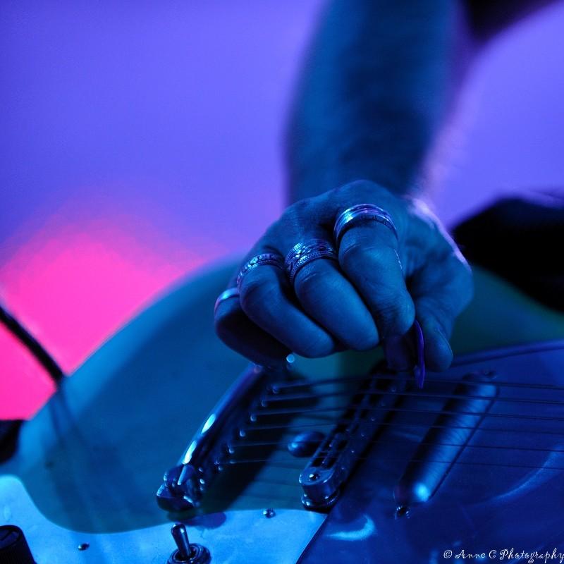 Hillbilly Moon Explosion, Paléo Festival, guitare,