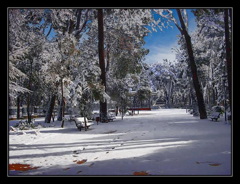 Comming snow / Nieve que viene
