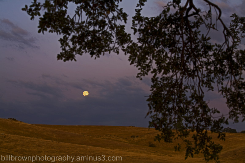 Moonrise - Latrobe Road