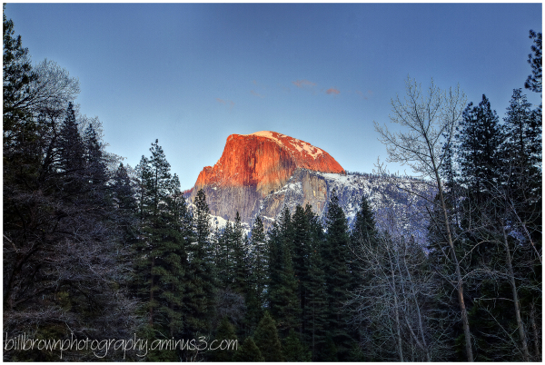 Half Dome   Evening Alpenglow