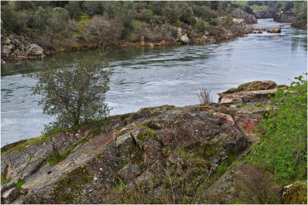 River, Rocks and Trees
