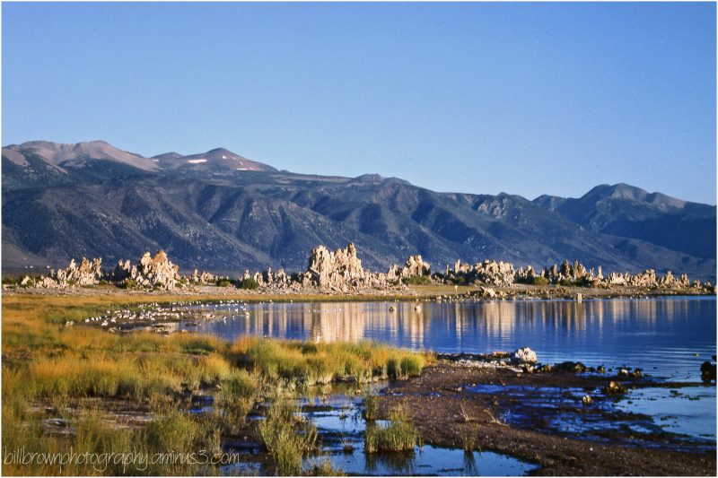 Mono Lake Tufa - 4 of 12