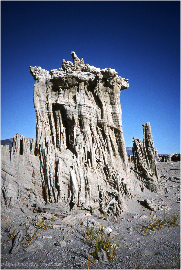 Mono Lake Tufa - 8 of 12