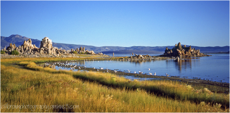 Mono Lake Tufa - 10 of 12