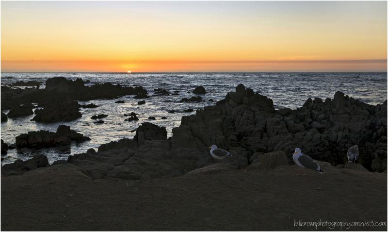 Asilomar Beach Sunset