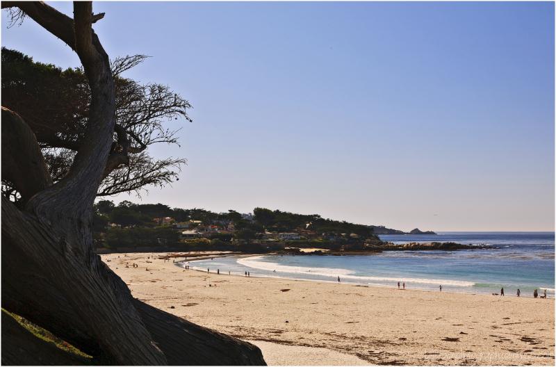 Carmel Beach 2 of 3