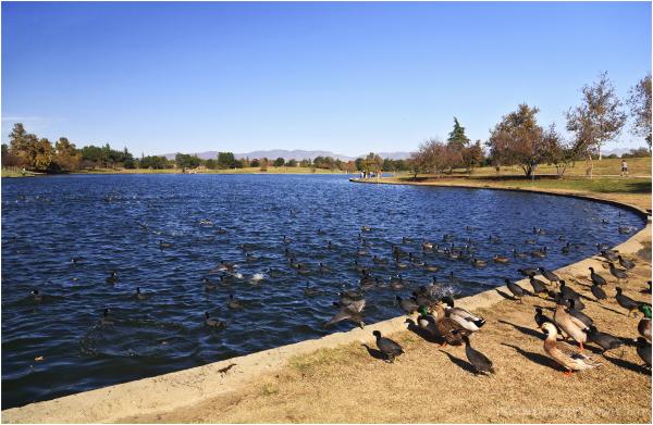 Balboa Lake