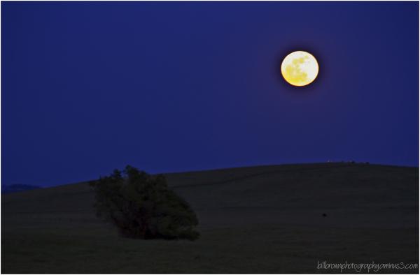 Super Moon Rising 050512
