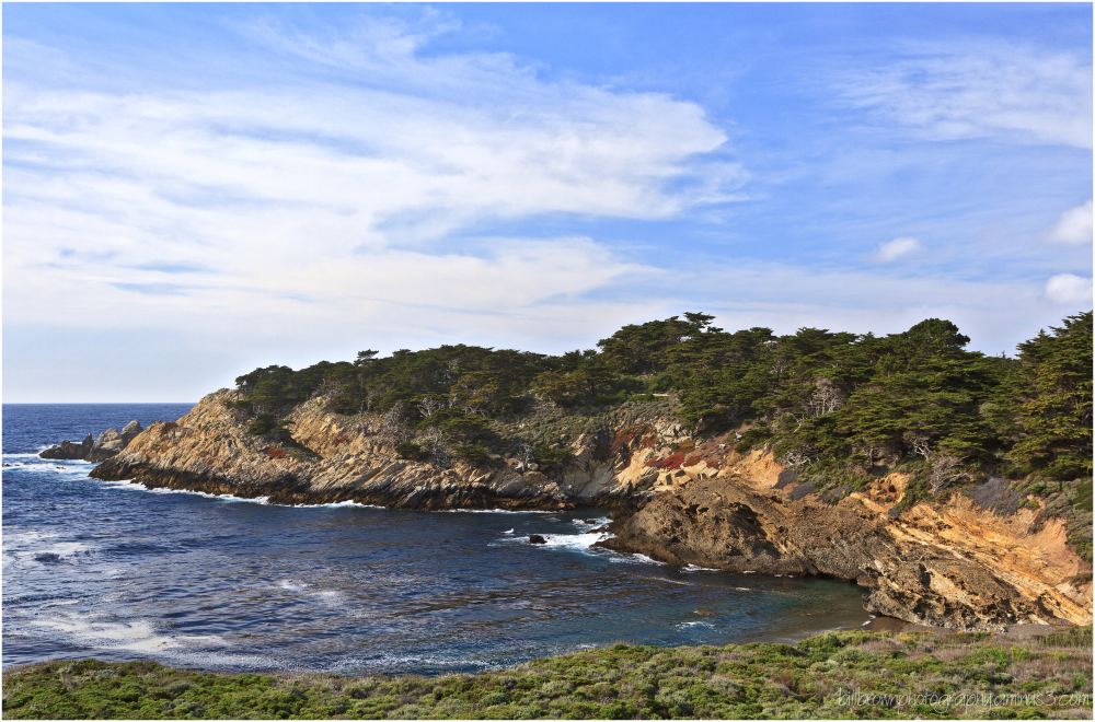 Afternoon at Point Lobos