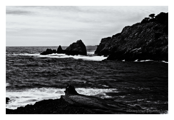 Rocks and Waves - Point Lobos