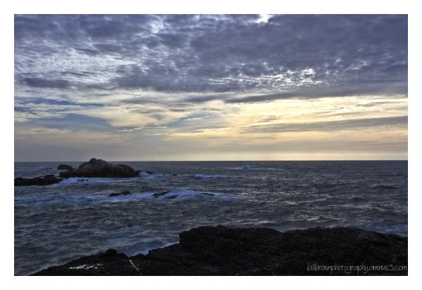 Sea Lion Point   Point Lobos