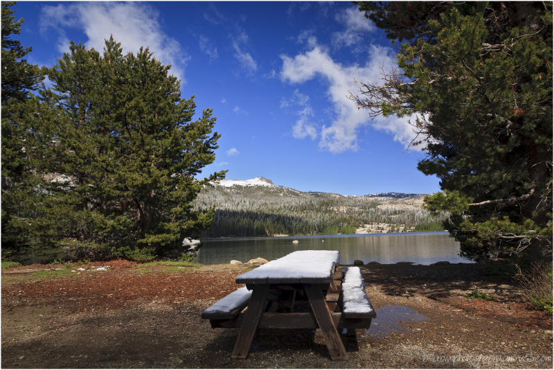 Picnic Table - Silver Lake