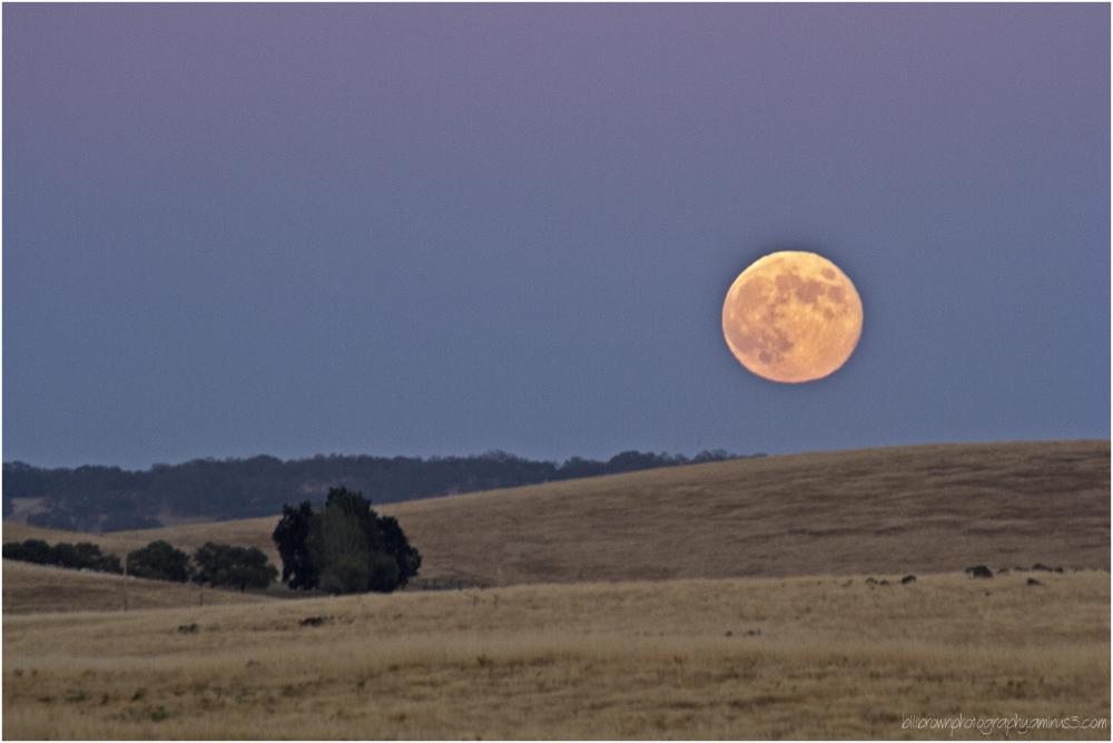Blue Moon Rising - Folsom, Ca