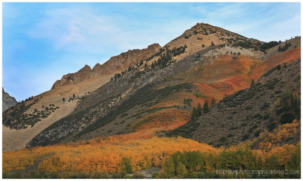 Fall Color Eastern Sierra - 1 of 3