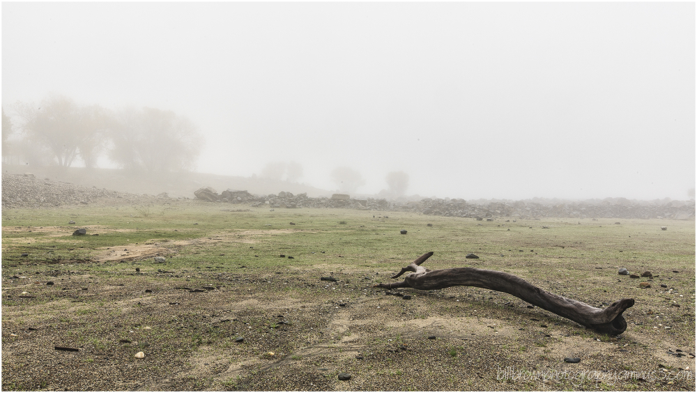 In the Fog - 2 of 3