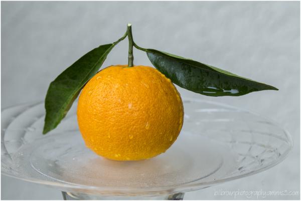 1st Orange