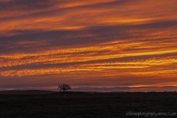 Folsom Sunrise 02072013