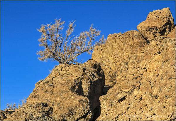 Pyramid Lake Rock Formations 3 of 3