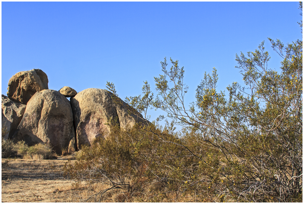 Rocks and Creosote Bushes