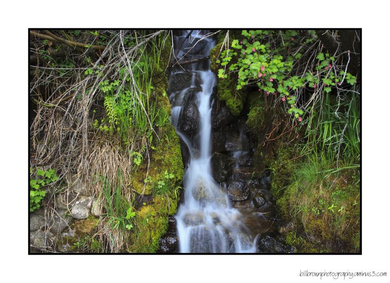 Little Waterfall #1