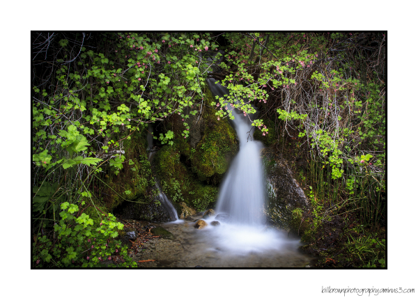 Little Waterfall #2, Eagle Falls Trail