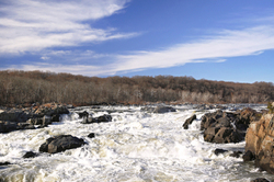 Great Falls Park - 1 of 5