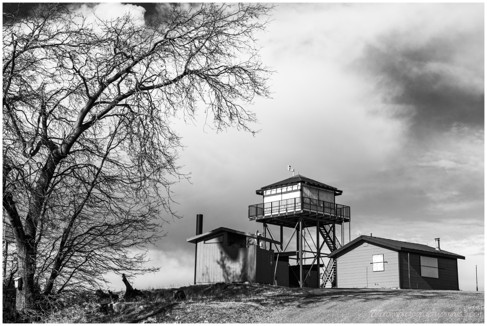 Fire Tower - Big Hill Lookout (b&w)