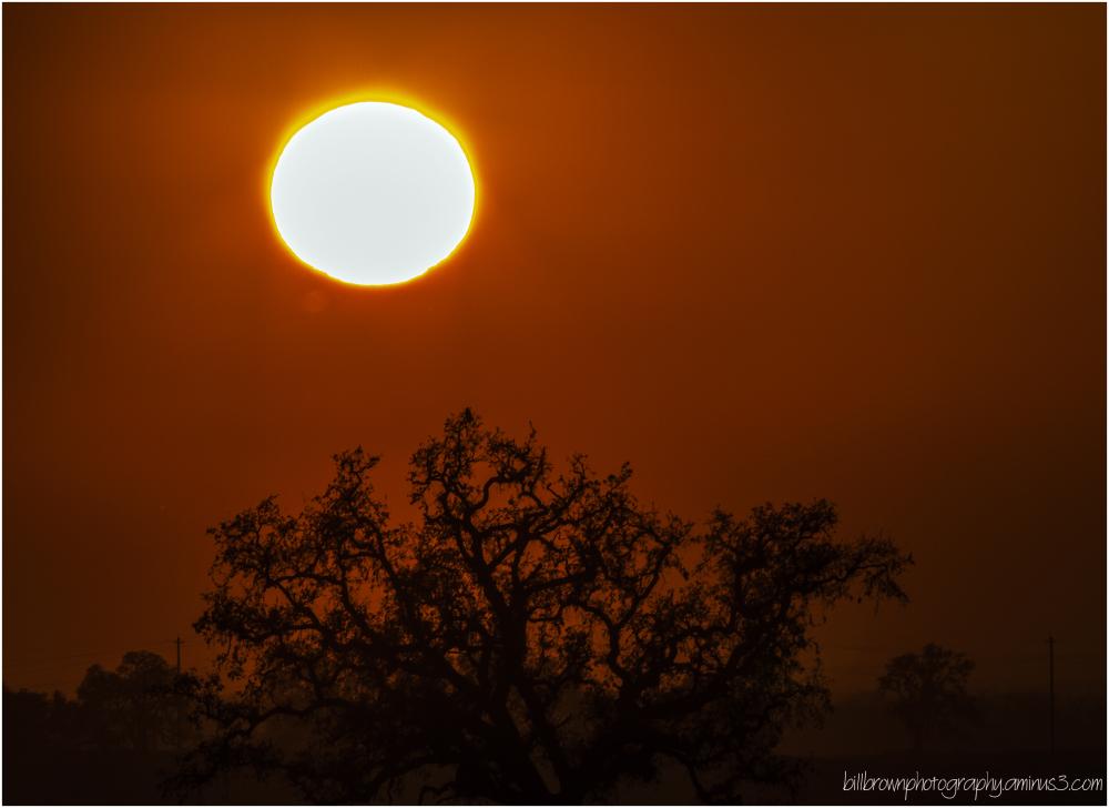 Sunset - Folsom Foothills (1 of 2)