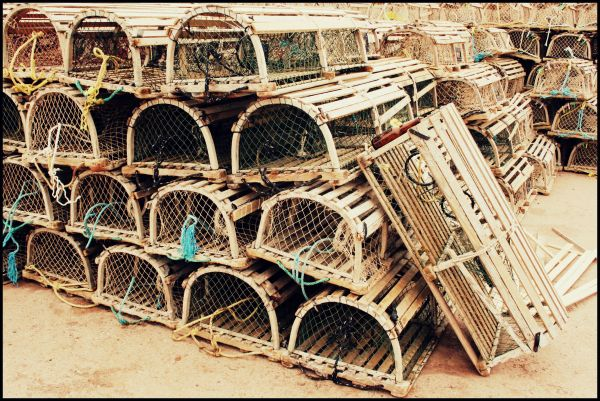 Lobster nets, P.E.I